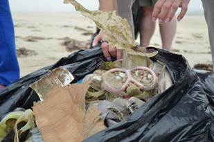 Bag of marine debris